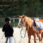 ecole-equitation-2