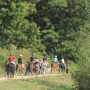 En balade à poney autour de l'étang